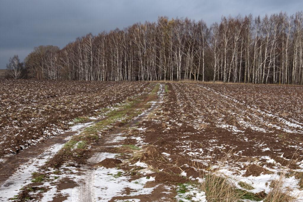 Buying rural land