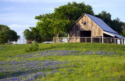 Buying A Farm in Texas
